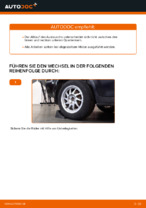 Tipps von Automechanikern zum Wechsel von FORD Ford Focus mk2 Limousine 1.8 TDCi Bremsscheiben