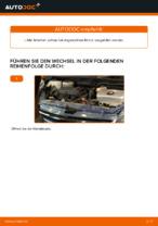TOYOTA PRIUS Hatchback (NHW20_) Getriebelagerung wechseln : Anleitung pdf
