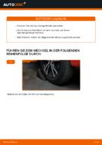 Online-Anleitung zum Lenkstangenkopf-Austausch am PEUGEOT 107 kostenlos