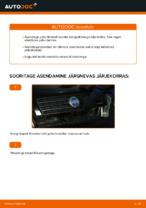 FIAT hooldus - juhend pdf