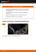 Hvordan bremseskiverne bag på VW Touran 1T1 1T2 udskiftes