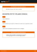 MOTUL CHRYSLER68171866AA för Transporter IV Minibuss (70B, 70C, 7DB, 7DK, 70J, 70K, 7DC, 7DJ) | PDF instruktioner för utbyte