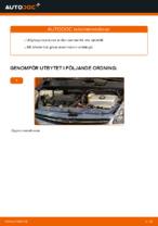 Steg-för-steg-guide i PDF om att byta Tändstift i TOYOTA PRIUS Hatchback (NHW20_)