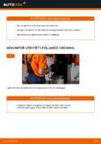 När byta Oljefilter TOYOTA YARIS (SCP1_, NLP1_, NCP1_): pdf handledning