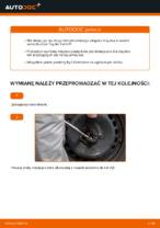 Zalecenia mechanika samochodowego dotyczącego tego, jak wymienić TOYOTA Toyota Yaris p1 1.4 D-4D (NLP10_) Filtr powietrza kabinowy