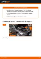Jak vyměnit zadní brzdové destičky kotoučové brzdy na BMW E92