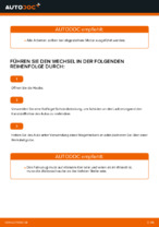 CARTECHNIC 40 27289 03179 8 für Transporter IV Bus (70B, 70C, 7DB, 7DK, 70J, 70K, 7DC, 7DJ) | PDF Handbuch zum Wechsel