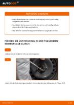 Reparatur- und Wartungsanleitung für TOYOTA VIOS/YARIS Saloon (ZSP9_, NCP9_)