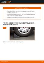 Wie Sie die hinteren Fahrwerksfedern am Toyota Yaris P1 ersetzen