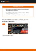 Wie der Austausch von Gasfedern des Kofferraumdeckels bei BMW E92-Autos funktioniert