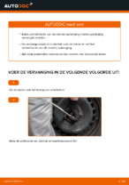 Chassisveer vervangen: pdf instructies voor TOYOTA YARIS