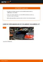 Hoe u gasveren voor het kofferbakdeksel van een BMW E92 kunt vervangen