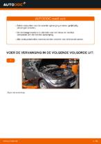 Hoe een veerpoot vooraan op een BMW E92 vervangen