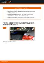 Wie Sie die hintere Aufhängung der Stoßdämpfer am BMW E92 ersetzen
