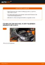 Wie ersetze ich ein vorderes Federbein beim BMW E92