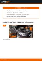 Sådan udskifter du motorolie og oliefilter på BMW E92