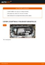Automekaniker anbefalinger for udskiftning af VW Touran 1t3 2.0 TDI Forlygtepære