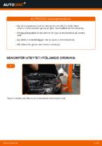 PDF guide för byta: Bromsskivor HONDA bak och fram