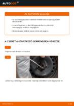 Online ingyenes kézikönyv - Spirálrugó TOYOTA YARIS (SCP1_, NLP1_, NCP1_) csere