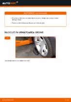 Înlocuire Brat bascula spate și față BMW cu propriile mâini - online instrucțiuni pdf