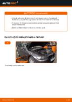Cum se înlocuiesc și se ajustează Placute Frana BMW 3 SERIES: manual pdf