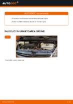 Recomandările mecanicului auto cu privire la înlocuirea TOYOTA Toyota Prius 2 1.5 Hybrid (NHW2_) Lamela stergator