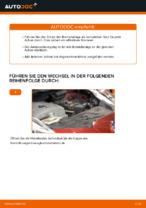 PDF-Tutorial zur Wartung für LEAF