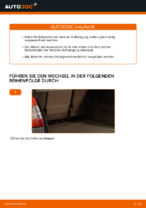 Hilfreiche Fahrzeug-Reparaturanweisung für hydraulisch und luftdruck Federbein RENAULT