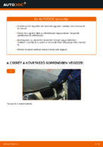 BMW karbantartási útmutató pdf