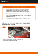 Bremsscheiben gelocht NISSAN X-TRAIL 2002 | PDF Anleitung zum Wechsel