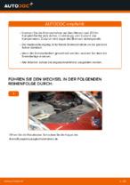 A.B.S. 16164 für NISSAN   PDF Anleitung zum Wechsel