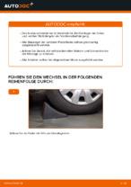 Tipps von Automechanikern zum Wechsel von FORD Ford Fiesta V jh jd 1.4 16V Heckklappendämpfer