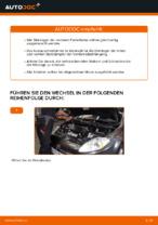 FIAT-Werkstatthandbuch mit Abbildungen
