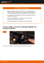 Descubra lo que está mal con su FIAT BRAVO II (198) utilizando nuestros manuales de taller