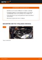 SACHS 802 183 för FIAT | PDF instruktioner för utbyte
