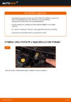 Ako vymeniť zadné brzdové kotúče na FIAT BRAVO II (198)
