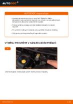 Jak vyměnit a regulovat Kotouče FIAT BRAVA: průvodce pdf