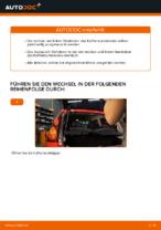DIY-Leitfaden zum Wechsel von Stoßdämpfer Satz beim PEUGEOT 107