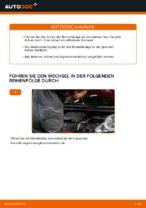 PEUGEOT 107 Bremszangenhalter ersetzen - Tipps und Tricks