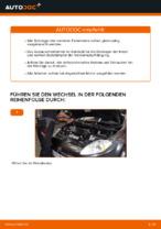Wie Sie das vordere Federbein am FIAT BRAVO II (198) ersetzen