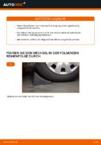 Schritt-für-Schritt-Anweisung zur Reparatur für BMW E90