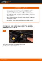 Wie der Austausch der hinteren Bremsscheiben bei einem FIAT BRAVO II (198) funktioniert