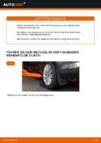 Schritt-für-Schritt-Anweisung zur Reparatur für Fiat Brava 182