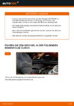 Austauschen von Bremsscheibe Anweisung PDF für PEUGEOT 107