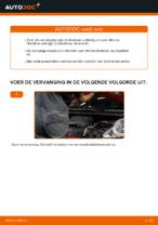 Hoe Remblokset achter en vóór veranderen en installeren: gratis pdf gids