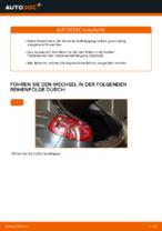 Wann Stoßdämpfer Satz auswechseln: PDF Tutorial für FIAT BRAVO II (198)