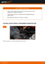 RIDEX 402B0029 til AUDI, CITROËN, DS, FIAT, FORD, LANCIA, PEUGEOT, RENAULT, SEAT, SKODA, VW | PDF udskiftnings guide