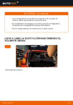 Cambio Pastillas De Freno traseras y delanteras PEUGEOT 107: guía pdf