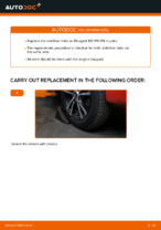 Auto mechanic's recommendations on replacing PEUGEOT PEUGEOT 107 1.4 HDi Brake Discs