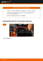 PDF guide för byta: Gasdämpare baklucka PEUGEOT